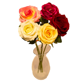 Rosenstiel offene Blüte 66cm 5ass