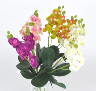 Orchideenstrauss 9 Blüten mit Blättern 57cm 4ass