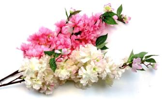 Kirschblütenzweig 98cm weiss rosa 2ass