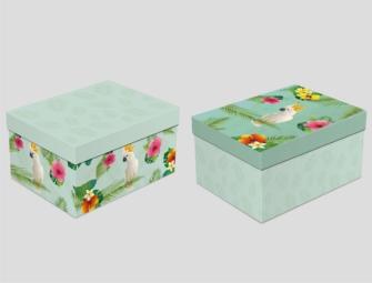 Geschenkboxen Tropic 5tlg 15x23x8.5cm bis 8x14x6cm 2ass