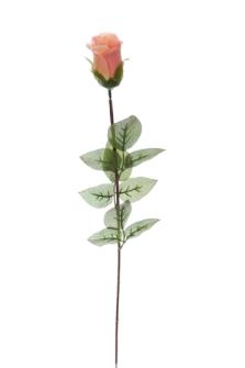 Rosenstiel lachsfarben 65cm