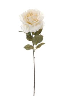 Rosestiel creme 55cm