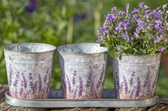 Pflanztopf rund grau mit Lavendelmuster 4er Set L36cm Zink