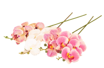 Orchidee 3D 4ass