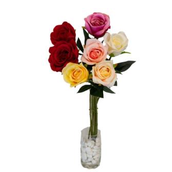 Rose halboffen 54cm Blüte ca. 7cm diam. 6ass