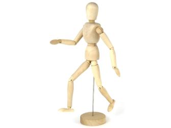 Holzmodell Mensch 30cm